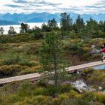 Utsikt mot moldepanoramaet på turstien mellom Varden og Skihytta.